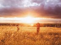 Das Sonnenschein-Vitamin